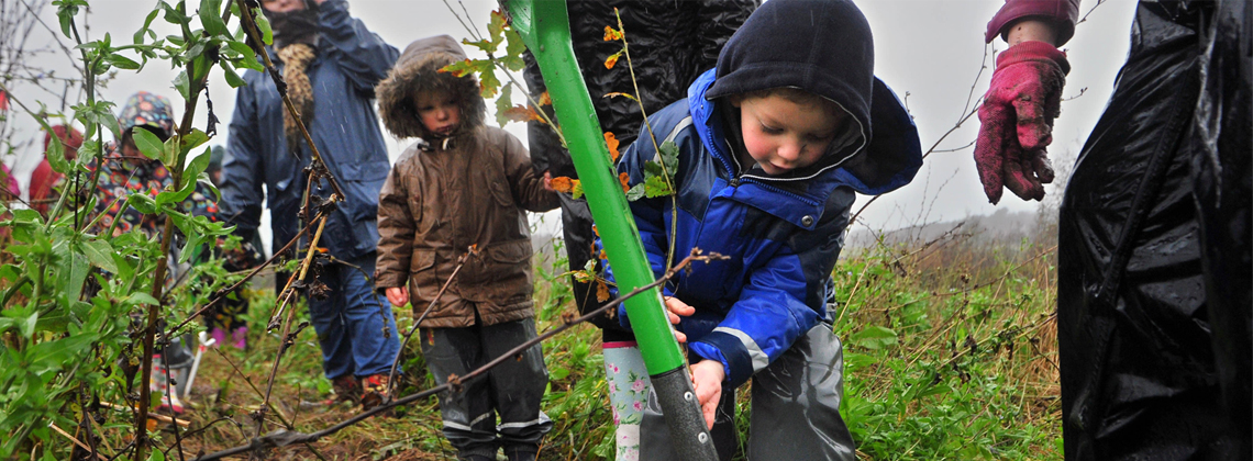 Toyota supports biodiversity education in 10 European countries