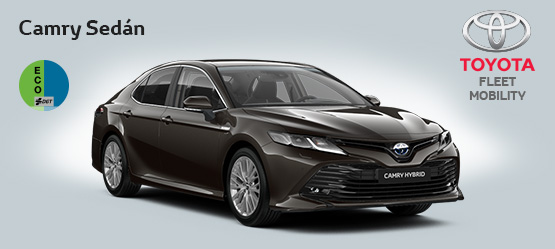 "<strong>Toyota Camry 220H Advance por <span style=""color: #e50000; font-size: 2.4rem;line-height: 2.4rem;"">435€</span> al mes</strong>"
