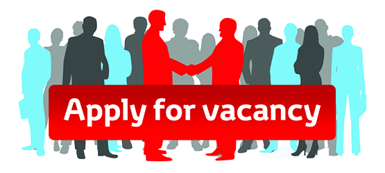 Careers in Toyota Motor Europe (Belgium)