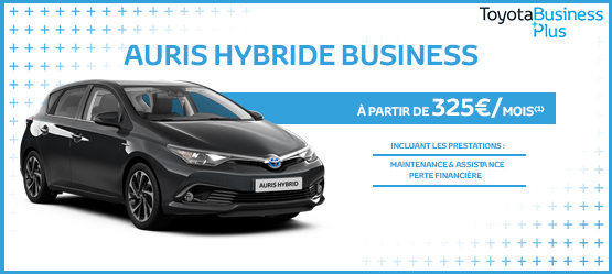 Toyota Auris Hybride Business